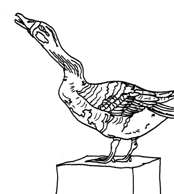 Milburga & the Geese