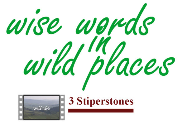 Wise Words in Wild Places3 Stiperstones image